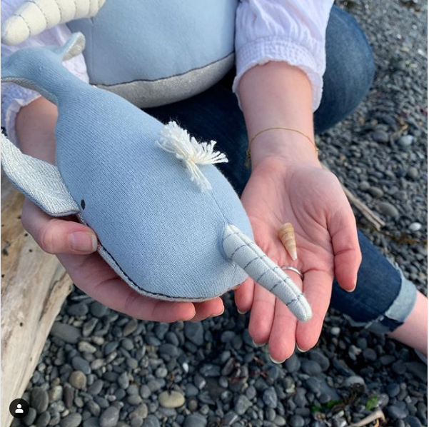 Milo is the softest junior pirate ever. And he's found his first piece of treasure! @merimeriparty #merimeri #merimeriparty #softtoys #plushie #stuffedanimal #gooddesign #pirate #picnic #beachpicnic #partyideas #picnicideas #shells #narwhal