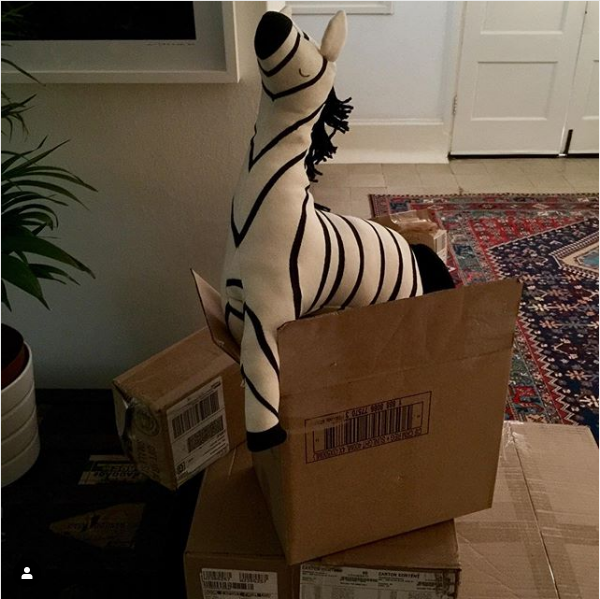 I'm having a HUGE revamp of my showroom to make way for STUNNING new samples from Meri Meri and Rifle Paper. This little fellow is getting ahead of himself and longing to take pride of place. He looks like trouble!! #merimeri #zebra #giftsforchildren